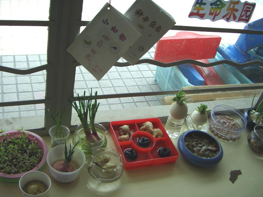 幼儿园周边的环境资源
