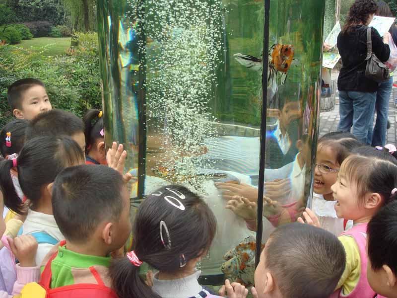 秋分飒爽,天气宜人。一大早,田林四幼的小朋友们乘坐大巴来到了上海动物园。一路上,孩子们兴致勃勃的谈论着即将看到的动物。 公园大门内,最先映入眼帘的,是一根根圆形的玻璃大水柱,一条条颜色鲜艳、体态优美的金鱼在水中恣意遨游,一个转身、一个摆尾,都能引来小朋友们的一片雀跃声。在导游的带领下,孩子们陆续看到了憨态可掬的大熊猫,看到了懒洋洋的老虎和狮子,还看到了馋嘴的大狗熊,为了讨吃的,它学人一样站立着,吐着舌头伸着手,有趣极了,小朋友们挥着手,向可爱的大狗熊不断打着招呼。 午餐时间,孩子们一个个迫不及待的吃起了幼